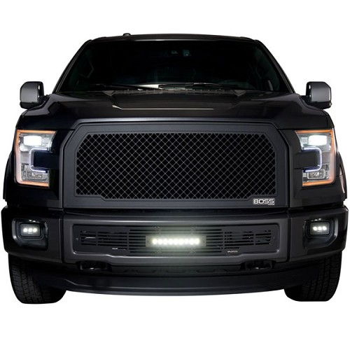 270545B - Grille w/o lights for vehicles w/o forward facing camera